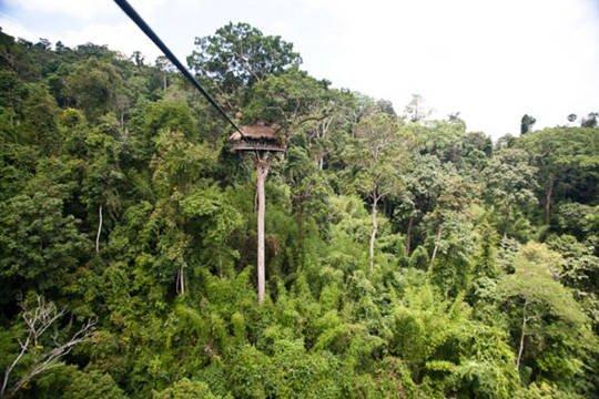 Du lịch Lào - Khu bảo tồn tự nhiên Bokeo - iVIVU.com