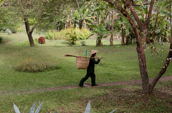 Quang cảnh tươi mát, thoáng đãng xung quanh La Residence Phou Vao.