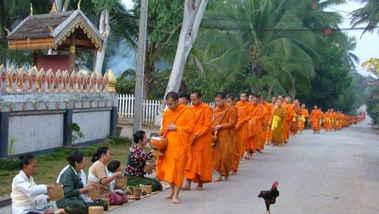 Sư khất thực tại Luang Prabang, Lào - iVIVU.com